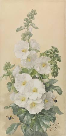 Paul de Longpre~Hollyhocks