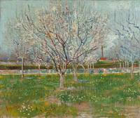 Vincent van Gogh~Orchard in Blossom (Plum Trees)