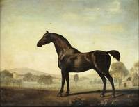 George Stubbs~Sweetwilliam', a Bay Racehorse, in a