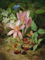 Josef Lauer~Autumn Flower with Blackberries