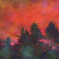 Red Sky Pines and Plum Branches by Faye Cummings