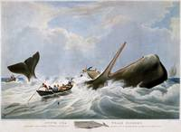 William John Huggins~South Sea Whale Fishery