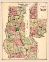 Cayuga County, NY, 1829 historic map restoration