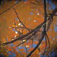 Autumn Sphere by Richard Thomas