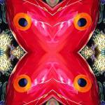 X Prints & Posters