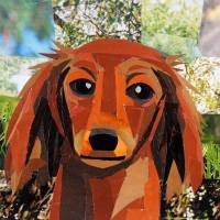 The Long Haired Dachshund Art Prints & Posters by Megan Coyle