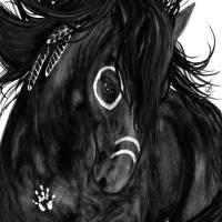 Majestic Black Spirit Horse Art Prints & Posters by AmyLyn Bihrle