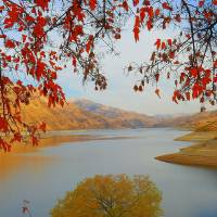 Snake River Canyon Autumn Art Prints & Posters by Art Photography