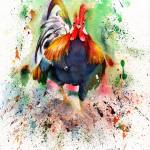 Charging Chicken Prints & Posters