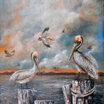 PELICANS AT THE BAY   Prints & Posters