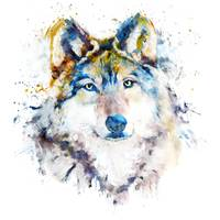 Wolf Face Watercolor Portrait