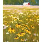 Farm-field-wildflowers-IK Prints & Posters