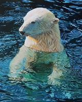 Original oil painting Floating polar bear