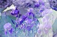 Dreaming in Purple Floral Abstract by Carol Groenen