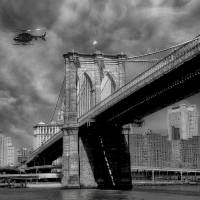 Brooklyn Bridge Art Prints & Posters by Nina Bradica