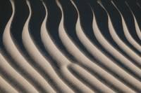 Sand Dune Detail by David Kocherhans