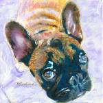 Cookie Monster French Bull Dog by RD Riccoboni