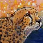 Cheetah Colors Prints & Posters