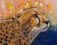 Cheetah Colors