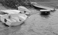 Chatham Dinghies in Black and White, Cape Cod
