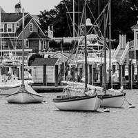 Elegant Sailboats in Harwich on Cape Cod