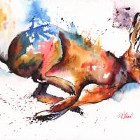 Splash and Dash hare painting Art Prints & Posters by Peter Williams