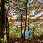 Fall Foliage on Cape Cod Prints & Posters