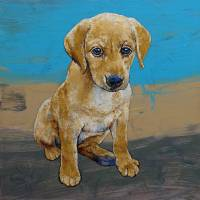 Yellow Lab Puppy Art Prints & Posters by Michael Creese