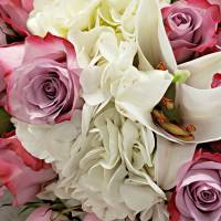 Pink Roses with White Hydrangea and Lilies by Through The Split Window