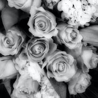 Soft Black and White Bouquet by Through The Split Window