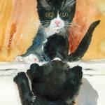 Black Kitten | CAT art Prints & Posters