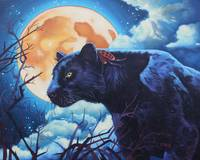 Original oil painting black panther night watcher