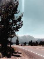 Road with pine tree and mountain view at Mammoth L