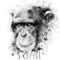 Watercolor Chimpanzee Black and White