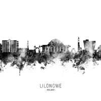 Lilongwe Malawi Skyline Art Prints & Posters by Michael Tompsett