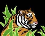 Stylized Tiger by Pixel Paint Studio