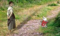Follow The White Rabbit