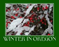 Winter in Oregon Poster