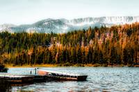 Boat on the lake with pine tree and mountain view