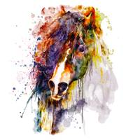 Abstract Horse Head