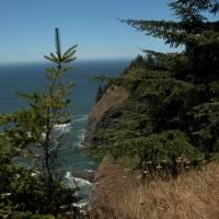 Oregon Coast by Sandy Mauck