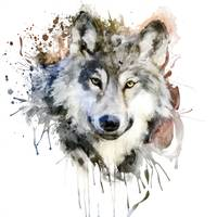 Wolf Watercolor Portrait