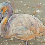 White Flamingo Prints & Posters