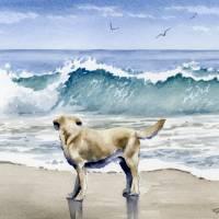 labrador retriever beach 3 Art Prints & Posters by David Rogers