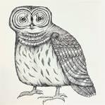 Bard Owl by Ann Huey