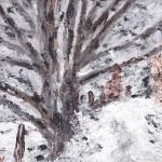 pic-LSS-Snow by Nancy Shewchuk