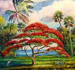 """Royal Poinciana """"Flame Tree"""" by Mazz Original Paintings"""