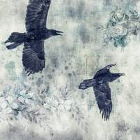 2 ravens in flight Art Prints & Posters by Priska Wettstein