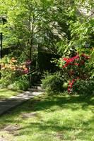 Springtime, the Arbutus Village 2021 8 by Priscilla Turner