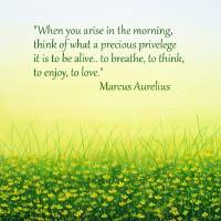QUOTE: Marcus Arelius Art Prints & Posters by Herb Dickinson